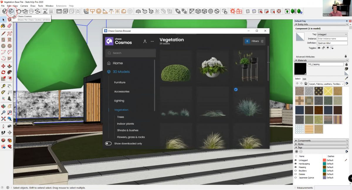 How to create realistic vegetation using SketchUp - Chaos Cosmos also offers a vegetation library