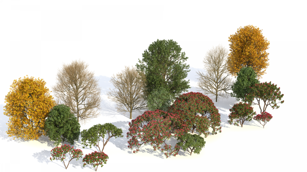 Download your free plant kit from Laubwerk here